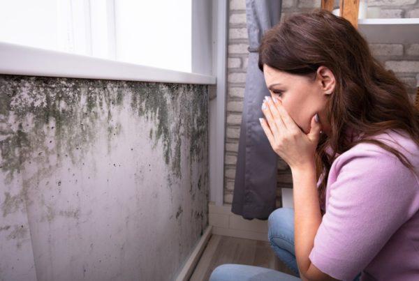 gevaren van vocht in huis vochtbestrijding